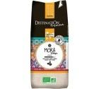 Café en grains Bio Moka Grande Origine Ethiopie 100% Arabica Destination x 1 kg