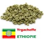 Café vert Yrgacheffe - Ethiopie -1kg