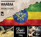 Caf� moulu Bio pour cafeti�re filtre : Ethiopie - Moka Waabaa - 250g - Caf�s Lugat