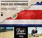 Café moulu pour cafetière à piston : Costa Rica - Finca Los Hernandez - 250g - Cafés Lugat