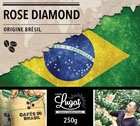 Café en grains : Brésil - Rose Diamond - 250g - Cafés Lugat