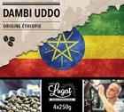 Café en grains : Ethiopie - Moka Dambi Uddo - Torréfaction Filtre - 1Kg - Cafés Lugat