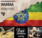 Café en grains Bio : Ethiopie - Moka Waabaa - 1Kg - Cafés Lugat