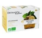 Tisane Ginger zest Bio x 20 sachets