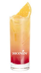 Fruit de Monin Cocktail Tequila