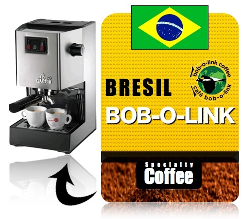 caf moulu pour machine expresso bob o link br sil. Black Bedroom Furniture Sets. Home Design Ideas