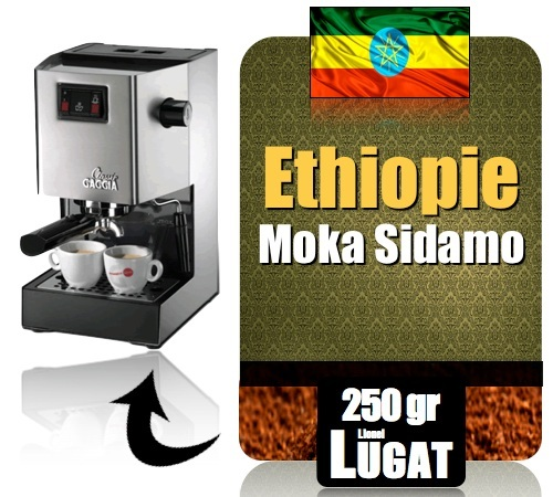 caf moulu pour machine expresso moka sidamo. Black Bedroom Furniture Sets. Home Design Ideas