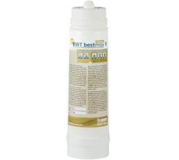 Bestmax Premium V BWT Water+More Filter Cartridge