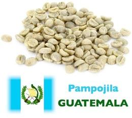 Café vert Pampojila - Guatemala - Lavé - 1kg