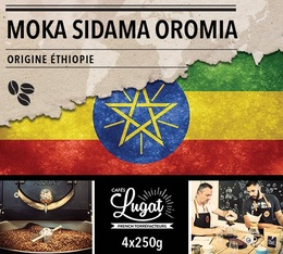 Café en grains : Ethiopie - Moka Sidama Oromia - 1Kg - Cafés Lugat