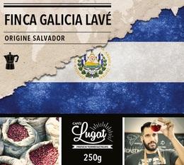 Café moulu pour cafetière italienne : Salvador - Finca Villa Galicia Lavé - 250g - Cafés Lugat