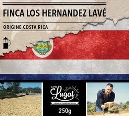 Café moulu pour cafetière à piston : Costa Rica - Finca Los Hernandez Lavé - 250g - Cafés Lugat