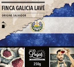 Café moulu pour cafetière piston : Salvador - Finca Villa Galicia Lavé - 250g - Cafés Lugat