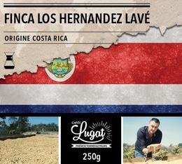 Café moulu pour cafetière Hario/Chemex : Costa Rica - Finca Los Hernandez Lavé - 250g - Cafés Lugat