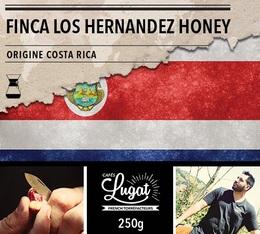 Café moulu pour cafetière Hario/Chemex : Costa Rica - Finca Los Hernandez Honey - 250g - Cafés Lugat