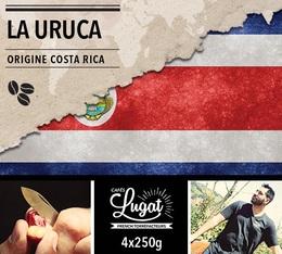 Café en grains : Costa Rica - La Uruca - 1Kg - Cafés Lugat