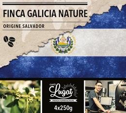 Café en grains : Salvador - Finca Villa Galicia Nature - 1Kg - Cafés Lugat
