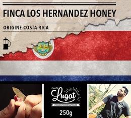Café moulu pour cafetière à piston : Costa Rica - Finca Los Hernandez Honey - 250g - Cafés Lugat