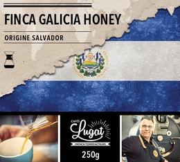 Café moulu pour cafetière Hario/Chemex : Salvador - Finca Villa Galicia Honey - 250g - Cafés Lugat