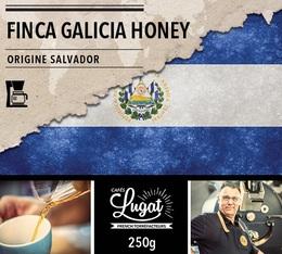 Café moulu pour cafetière filtre : Salvador - Finca Villa Galicia Honey - 250g - Cafés Lugat