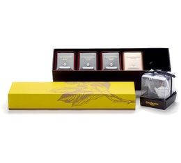 Voyages tea Collection Box: Eclat - 4 teas and Infuser - Dammann Frères