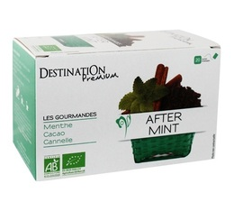 Tisane After Mint Bio x 20 sachets