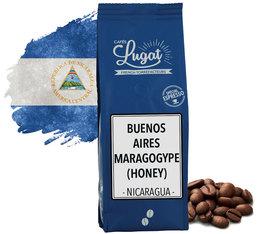 Café en grains maragogype honey