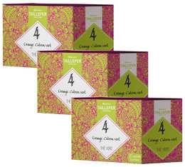 Pack Thé vert orange citron vert en sachet- Maison Taillefer - 3 boîtes de 20 sachets