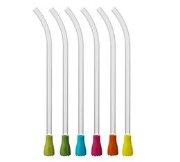 Paquet de 6 pailles filtres (500248) Tools - Aubecq