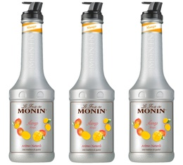 Lot de 3 Purées de Fruit de Monin - Mangue - 3 x 1L