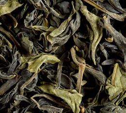 Pacific Green Oolong Tea - 100g loose leaf tea - Dammann Frères