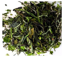 Destination organic White tea