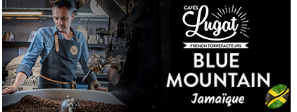 café blue mountain